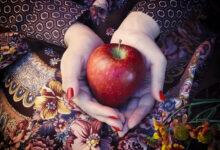 Photo of Nieuwe oogst: welke appel eet je wanneer?