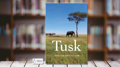 Photo of Tusk