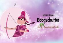 Photo of Boogschutter