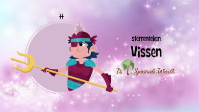 Photo of Vissen
