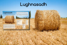Photo of 1 augustus vieren we Lughnasadh